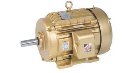 50 HP TEFC Electric Motor